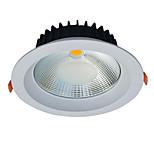Jiawen 20W LED Ceiling Light Anti-glare Embedded Recessed Downlight  AC85-256V