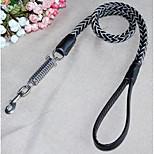 Dog Collar Leash Adjustable/Retractable Solid Orange Nylon