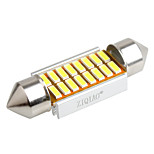 ziqiao 36mm 16 SMD LED 4014 CANbus auto slinger interieur gloeilampen (12v / 2 stuks)