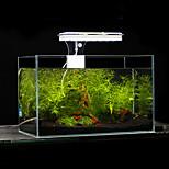 Aquarium LED Lighting White Blue With Switch(es) LED Lamp AC 100-240V