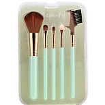 Sandepin Peppermint Color 5 Makeup Brush Set Synthetic Hair Travel For Beginner With Box