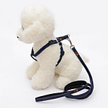 Dog Leash Adjustable/Retractable Solid Nylon