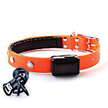 Collar LED Lights Adjustable/Retractable Solid TPU Orange Yellow Red Blushing Pink