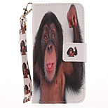 For Apple iPhone 7 Plus  7 Card Holder Wallet with Stand Flip Pattern Case Full Body Case Animal Hard PU Leather  6s Plus  6Plus 6s 6 5s 5