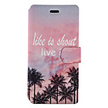 For Huawei P9 Lite P8 Lite (2017) Case Cover Coconut Tree Pattern Painted PU Material Card Holder Mobile Phone Holster Phone Case Y5II Hono 5X P8 Lite