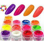 13Bottle/Set Colorful Neon Effect Nail Fluorescent Glitter Power Beautiful Nail Art Neon Pigment Power Nail Beauty DIY Design Nail Decoration YE01-13