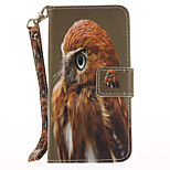 For  Apple iPhone 7 Plus  7 Card Holder Wallet with Stand Flip Pattern Case Full Body Case Owl Hard PU Leather 6s Plus  6Plus 6s 6 5s 5
