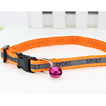 LEASH  Safety Training Flower Nylon