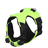 Harness Adjustable/Retractable Breathable Running 300M Safety Training For Car Solid Nylon Blue Green Red