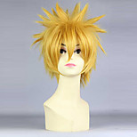 Cosplay Wigs Cosplay Cosplay Short Anime Cosplay Wigs 30 CM Heat Resistant Fiber