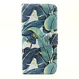 For SONY Xperia X XA Xperia M4 Aqua The Flowers Pattern PU Leather Case
