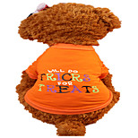Holdhoney Dog Shirt / T-Shirt Orange Letter Dog Clothes Summer Animal Fashion #LT15050287