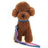 High-quality fashion Gold ribbon Dog Collars Nylon Material dog traction rope cat dog harness Pet Supplies Wholesale sales Width 1.5