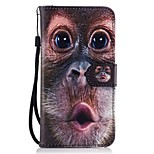 For Huawei P8 lite 2017 Mate9 Card Holder Wallet with Stand Flip Pattern Case Full Body Case Oranguta Hard PU Leather for Honor 5C 7 8 Y5II Y6 II Y560