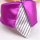 Dog Tie/Bow Tie Dog Clothes Summer Solid Casual/Daily Blushing Pink Fuchsia Yellow Purple