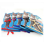 Harness Safety Training Solid Fabric Rainbow
