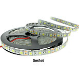 12V 60W 6000LM IP65 Waterproof Resistance LED Strips Available color is White/Blue/Red/Yellow
