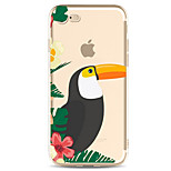 For Apple iPhone 7 7 Plus 6S 6 Plus Case Cover Toucan Pattern Painted High Penetration TPU Material Soft Case Phone Case