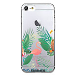 For Case Cover Ultra Thin Pattern Back Cover Case Flamingo Soft TPU for iPhone 7 Plus  7  6s Plus 6 Plus  SE 5S 5