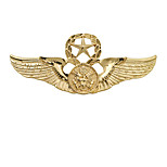 Boys´ Other Brooches Unique Design Euramerican Personalized Gold Plated Alloy Star Wings / Feather Silver Gold Jewelry For Daily Casual