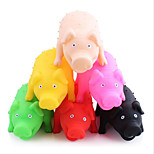 Dog Toy Pet Toys Chew Toy Interactive Squeak / Squeaking Pig Rubber