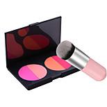 4 Colour Blush Matte and Pink Practical Blush Brush