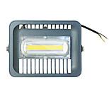 1Pcs 30W Cool White LED Flood Light 1100LM 220v