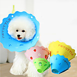 Dog Grooming Health Care Baths Anti Bite Collar Random Color