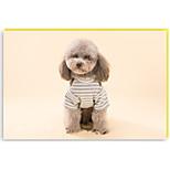 Собака Упряжки Одежда для собак На каждый день Полоски Серый Коричневый полоса