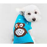 Собака Свитера Одежда для собак На каждый день Носки детские Оранжевый Синий