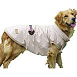 Собака Жилет Одежда для собак На каждый день Сплошной цвет Бежевый