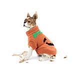 Собака Свитера Одежда для собак Хэллоуин Тыква Желтый