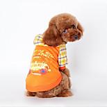 Собака Толстовка Одежда для собак На каждый день Буквы и цифры Оранжевый Синий