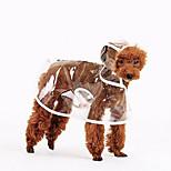 Собака Дождевик Одежда для собак На каждый день Сплошной цвет Белый Оранжевый Зеленый