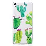 Tok Sony Xperia m2 xa tokhoz kaktusz minta festett nagy behatolású tpu anyag imd folyamat lágy tok telefonos tok Sony Xperia xz