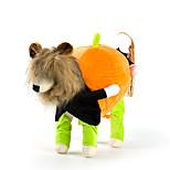Собака Костюмы Одежда для собак Хэллоуин Сплошной цвет Черный Желтый Зеленый