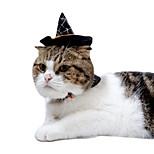Кошка Костюмы Одежда для собак Косплей Тыква Черный