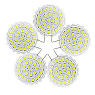 YWXLight® 5Pcs G8 2835 SMD 31LED Bi-Pin Lights 2W 100-200Lm Warm White Cool White Chandelier Decorative Light 110-140V