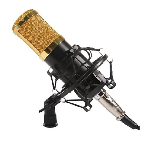 BM-800 карманный звукозаписи и вещания микрофон