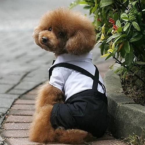 Собака Костюмы смокинг Одежда для собак Контрастных цветов Черный/Белый Терилен Костюм Для домашних животных Муж. Косплей Свадьба комбинезон дождевик для собак dezzie такса большая