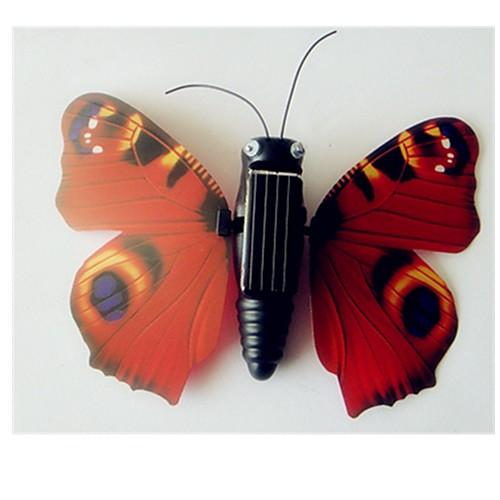 Наборы юного ученого Бабочки Солнце Животный принт Животные