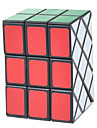 Irregularly Magic DS Puzzle Brain Teaser IQ Cube