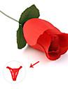 장미 비키니 pantiy 속옷 붉은 색