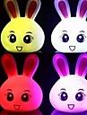 bel coniglio a forma di luce colorata notte ha portato