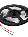 5M 20W 300x3528 SMD White Light LED Strip Lamp (12V)