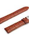 Unisex Genuine Leather Watch Strap 22MM(Brown)