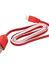 USB Sync & Charge Flachbandkabel für Samsung Galaxy Handys und andere (rot, 100cm Länge)