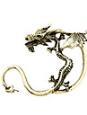 Bronze & Alloy Retro Dragon Earrings