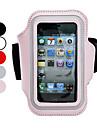 아이폰 5/5S (분류 된 색깔)를위한 팔 결박을 가진 방어적인 케이스
