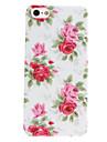 Elegant Design Flower Pattern Hard Case for iPhone 5/5S